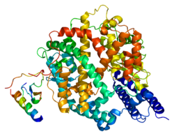 Image 4: ACE-2 Receptor Protein Image