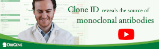 Clone ID reveals the Source of Monoclonal Antibodies