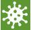 lenti icon