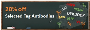 20%off selected tag antibodies