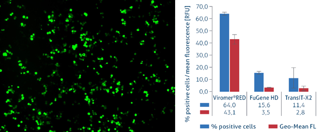 Viromer Red (DNA Transfection)