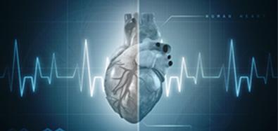 心肌类标志物