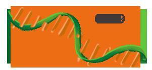 Cas9 mRNA