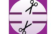 Synthetic sgRNA (100mer)