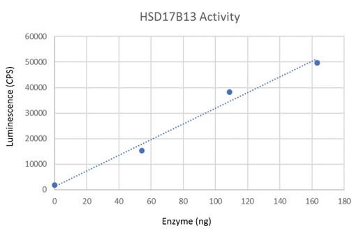 HSD17B13