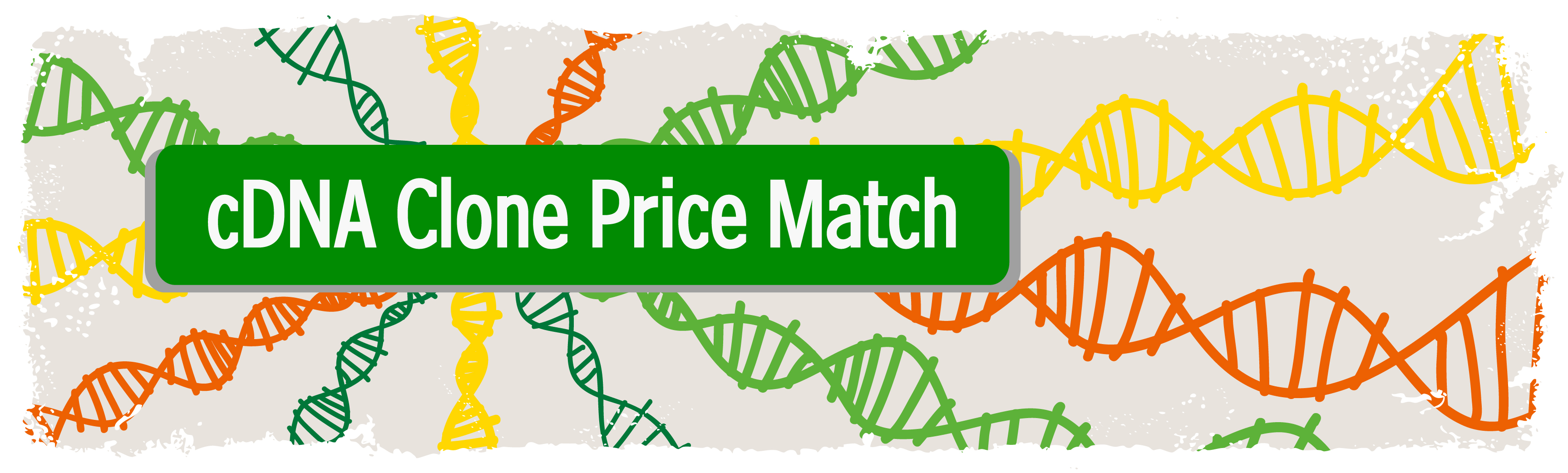 cDna Clone Price Match