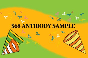 Antibody sample