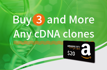 cDNA clone promotion banners