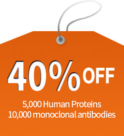 40% off protien and antibody