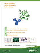 Antibody Brochure