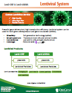 Lentiviral System Brochure