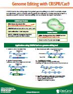 CRISPR Brochure