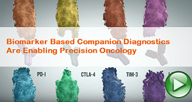 Biomarker Based Companion Diagnostics are Enabling Precision